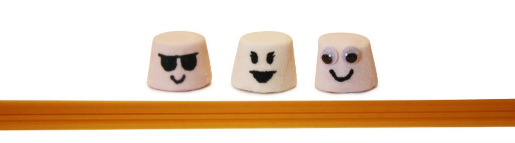 Facilitative approach to the Marshmallow challenge - 3 marshmallows